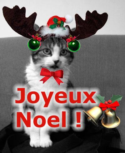 Joyeux Chrisnouka Coquine-renne